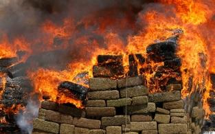 d a incineracion droga tijuana
