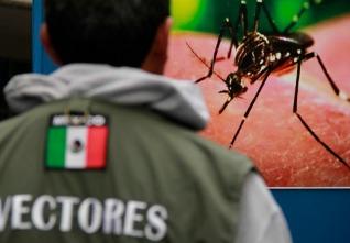 d a virus zika baja california