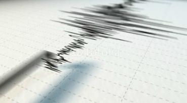 d a sismografo