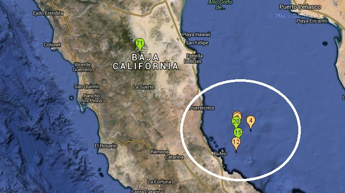 d a temblor san felipe baja california