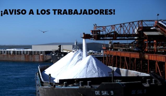 exportadora-de-sal