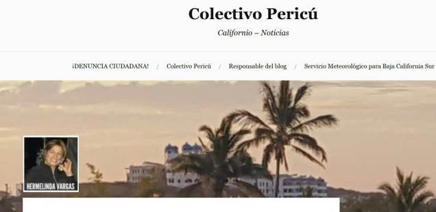 d a a colectivo pericu blog