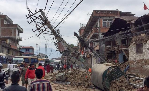 d a a a terremoto
