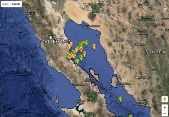 d a a a a a golfo de california enajambre sismico