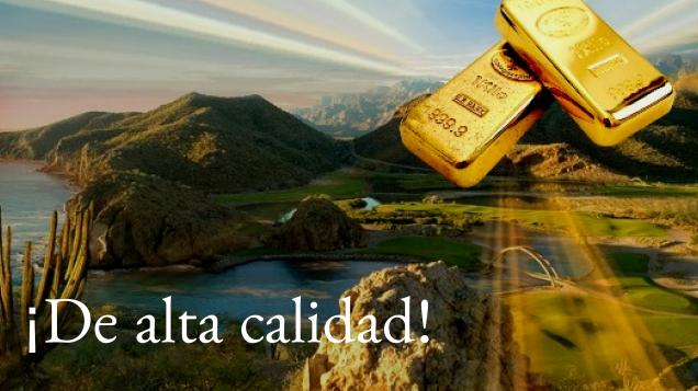d a a a oro de loreto y comondu