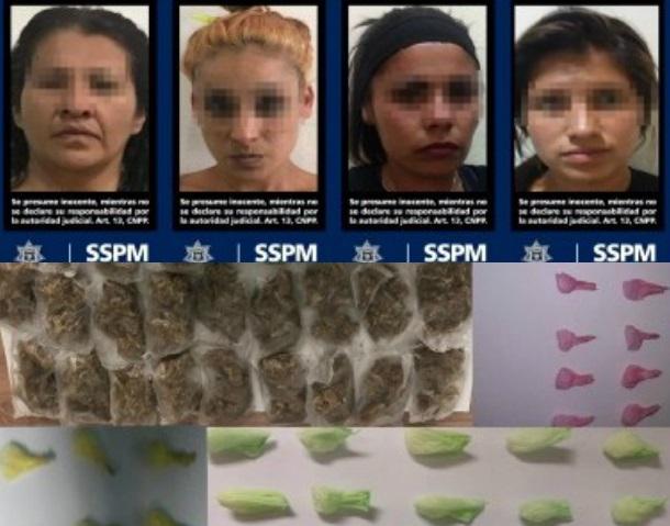 d a a a drogas colonias de tijuana