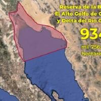 ¡Piden a #AMLO reclamar soberanía de Mar de Cortes para México!