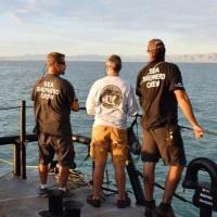 Autoriza gobierno de AMLO regreso de Sea Shepherd al Golfo de California
