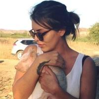 ¡Asesinaron a activista PRO ANIMAL en Los Cabos!